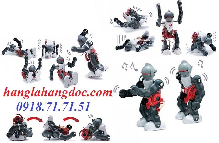 Đồ chơi lắp ráp thông minh: tắc kè cảm biến hồng ngoại, robot hậu đậu, solar kit 6 in 1, 3 in  1, 4 in 1,....